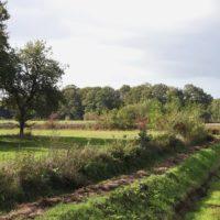 Ecologische commissie adviseert het collectief